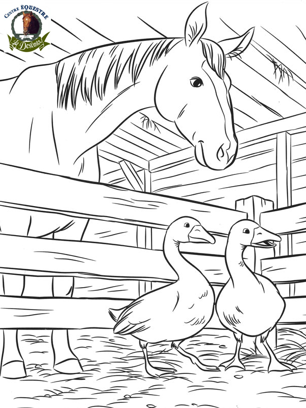 Dessin Barbie Et Son Cheval